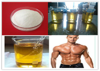 Terbaik Muscle Building Suntik Anabolic Steroid TNE 58-22-0 Testosteron Suspension for sale
